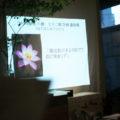 第4回 養生を学ぶ お教室 参加者募集 3月15日(火)